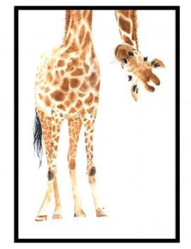 Cuadro jirafa divertido...