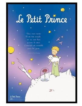 Cuadro Le Petit Prince