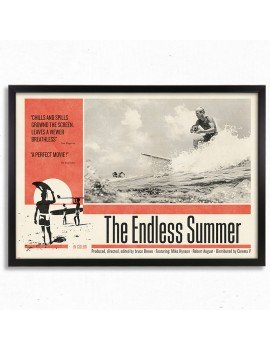 Cuadro The Endless Summer