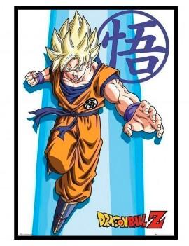 Cuadro de Dragon Ball Z