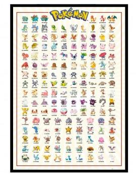 Cuadro Pokemon