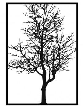 Cuadro botánica árbol blanco y negro