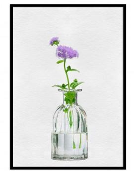 Cuadro botánica florero...