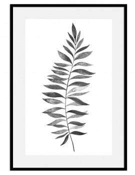 Cuadro botánica hoja blanco y negro