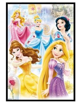 Cuadro Disney Princess